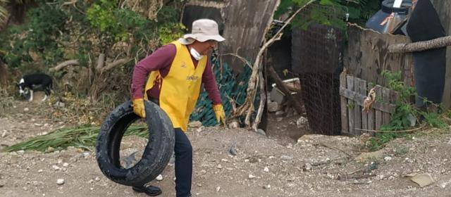 Descacharrización en Jiutepec